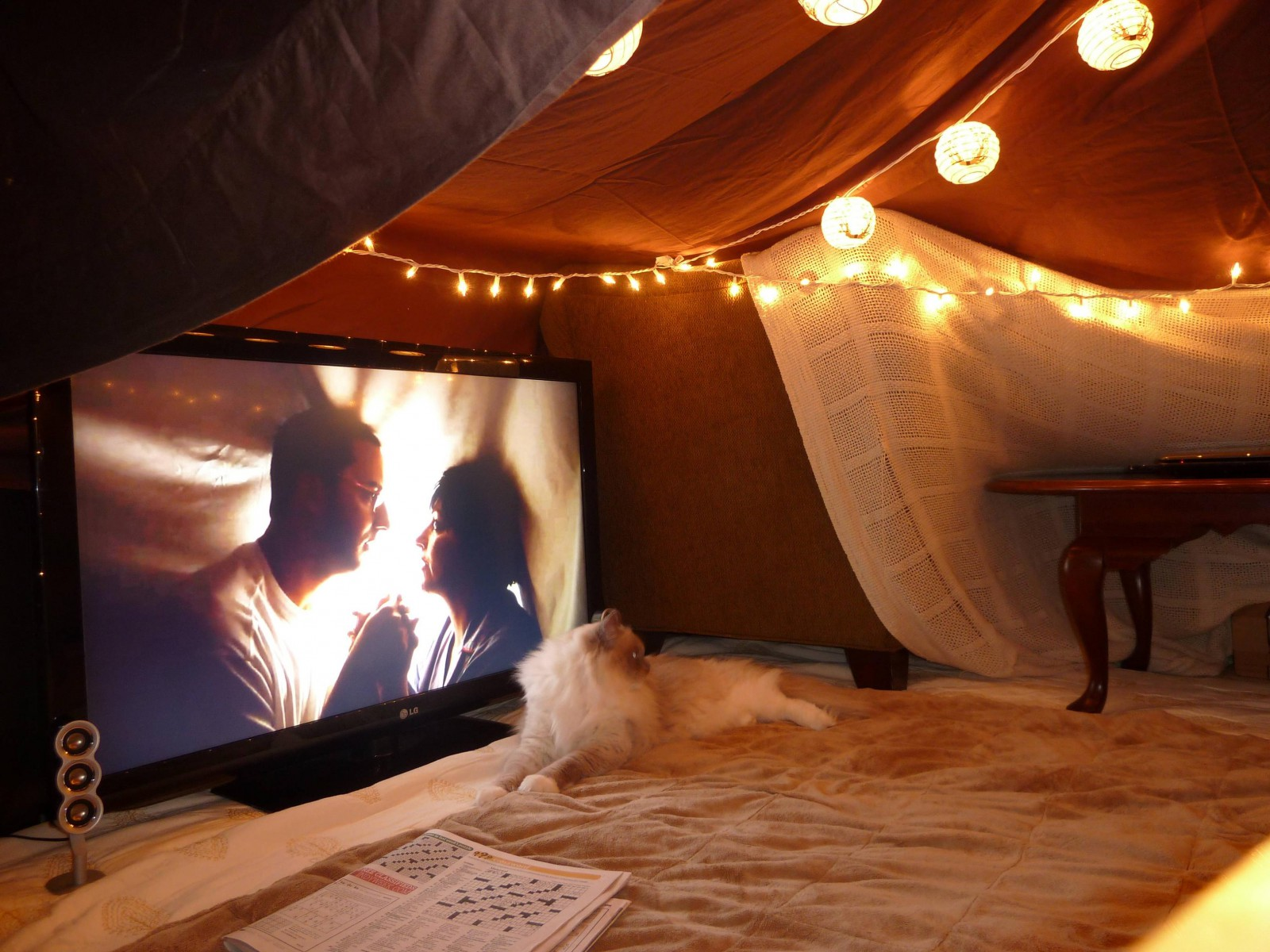 Attractive Blankets And Lights. Blanket Fort